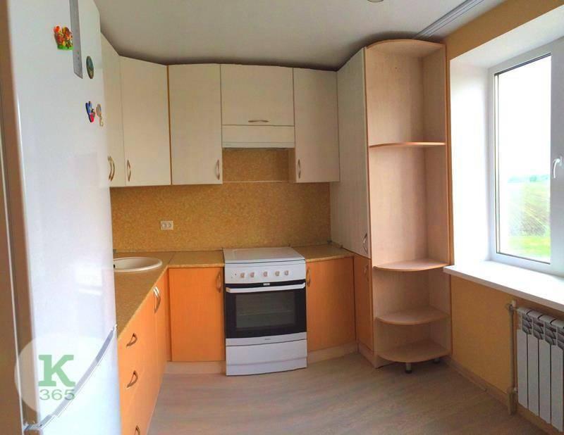 Кухня с колонкой Спутник Стиль артикул: 0003147